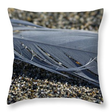 Feather And Sand Throw Pillow