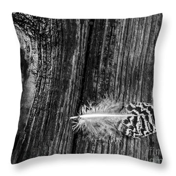Feather And Wood Throw Pillow