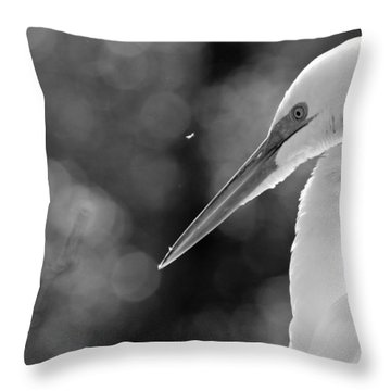 Feather Fly Away Throw Pillow