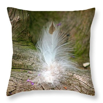 Feather Throw Pillow by Karen Adams