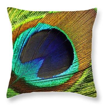 Fed Throw Pillows