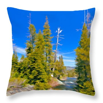 Feather River Throw Pillow