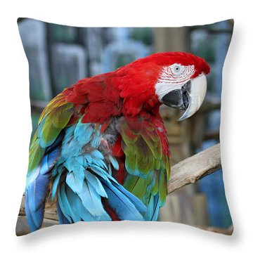 Feathers Throw Pillow