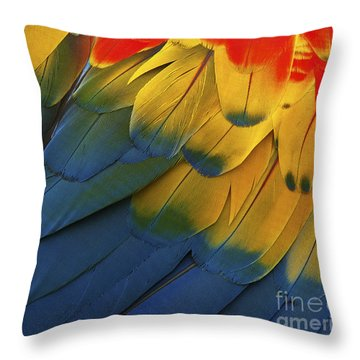 Feathery Details... Throw Pillow by Nina Stavlund