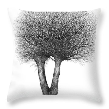 February '12 Throw Pillow