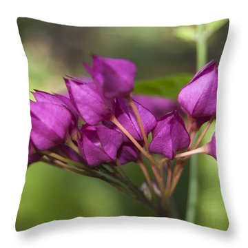 Throw Pillow featuring the photograph February Color by Penny Lisowski