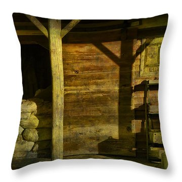 Feed Mill Store Throw Pillow by Randall Nyhof