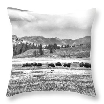 Feeding Bison And Scenic View  Throw Pillow