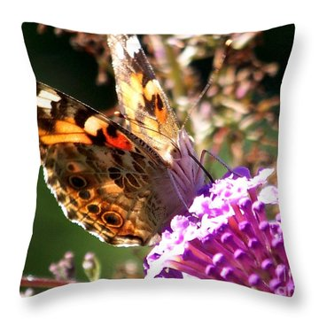 Feeding Throw Pillow