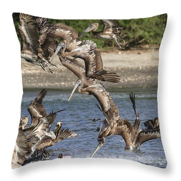 Throw Pillow featuring the photograph Feeding Frenzy by Gary Hall