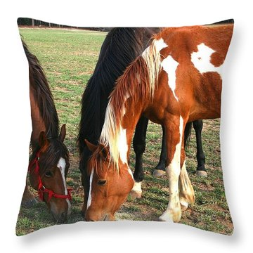 Feeding Horses Throw Pillow
