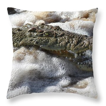 Feeding Time All Profits Go To Hospice Of The Calumet Area Throw Pillow