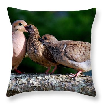 Feeding Twin Mourning Doves Throw Pillow