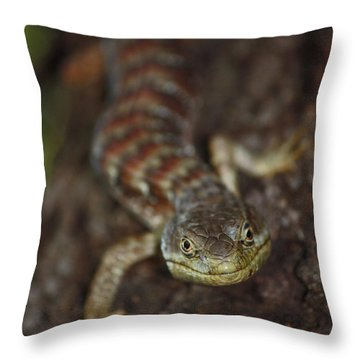Feel Lucky - Punk Throw Pillow