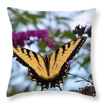 Feeling Pretty II Throw Pillow by Judy Wolinsky
