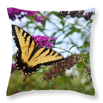 Feeling Pretty Throw Pillow by Judy Wolinsky