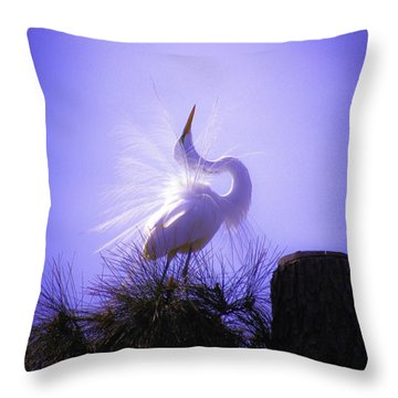 Throw Pillow featuring the photograph Feeling Pretty by Ola Allen