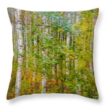 Feels Like Autumn In A Forest Of Birch Trees Throw Pillow