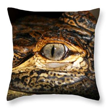 Feisty Gator Throw Pillow