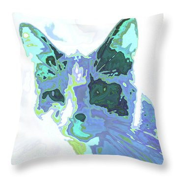 Feline Abstraction Throw Pillow by Tom Druin
