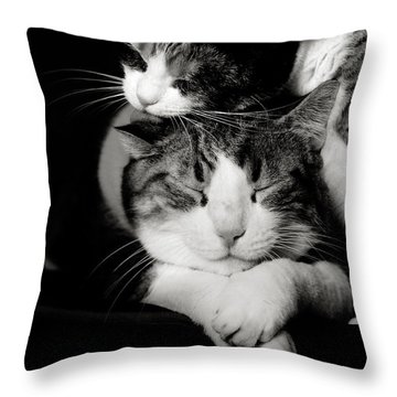 Throw Pillow featuring the photograph Feline Love  by Laura Melis