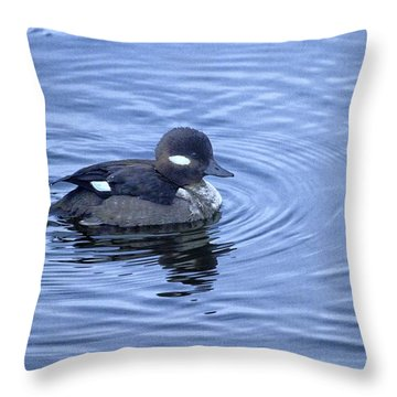 Female Bufflehead Duck Throw Pillow by Constantine Gregory