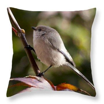 Female Bushtit Throw Pillow by Betty Depee