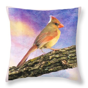 Female Cardinal Away From Sun Throw Pillow by Janette Boyd