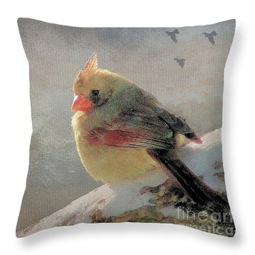 Female Cardinal V Throw Pillow by Janette Boyd