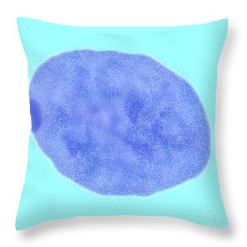 Female Cell Nucleus With Barr Body Throw Pillow