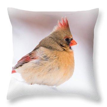 Female Northern Cardinal Throw Pillow