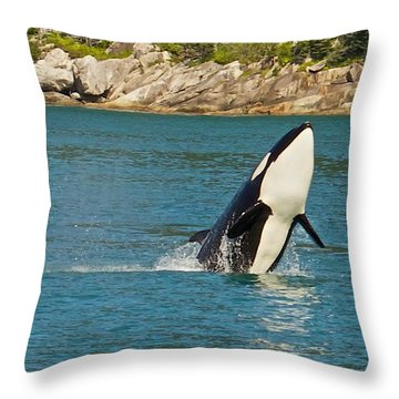 Female Orca Cheval Island Alaska Throw Pillow