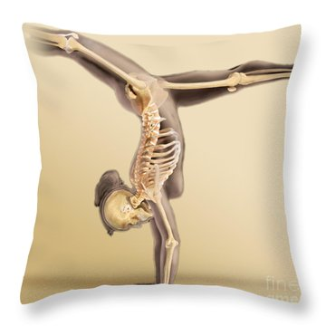 Female Skeletal System Throw Pillow by Anatomical Travelogue