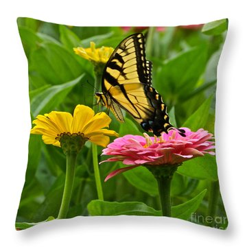 Female Tiger Swallowtail Butterfly With Pink And Yellow Zinnias Throw Pillow