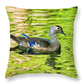 Female Wood Duck Throw Pillow by Deborah Benoit