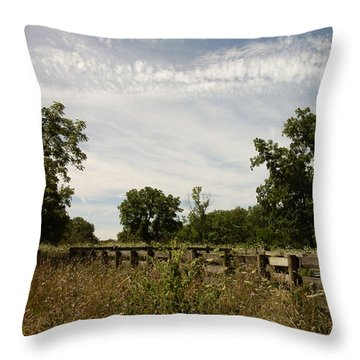 Fence 2 Throw Pillow by Cynthia Lassiter