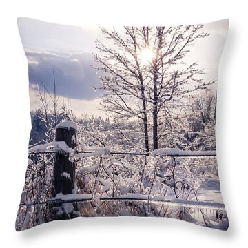 Fence And Tree Frozen In Ice Throw Pillow