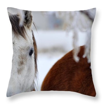 Fence Friend 13195 2 Throw Pillow