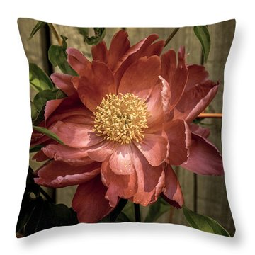 Fence Hugger Throw Pillow