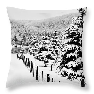 Fence Line Throw Pillow by Tim Wilson