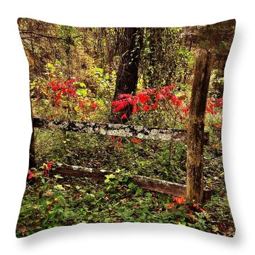 Fence On The Buffalo Throw Pillow by Marty Koch