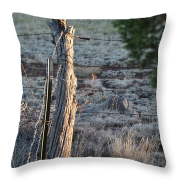 Throw Pillow featuring the photograph Fence Post by David S Reynolds