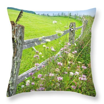 Fence Post Throw Pillow by Melinda Fawver