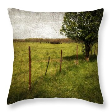 Fence With Tree Throw Pillow by Cynthia Lassiter