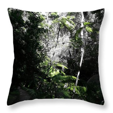 Fenced Green Throw Pillow by Rushan Ruzaick