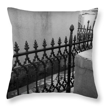 Fenced In Throw Pillow by Beth Vincent