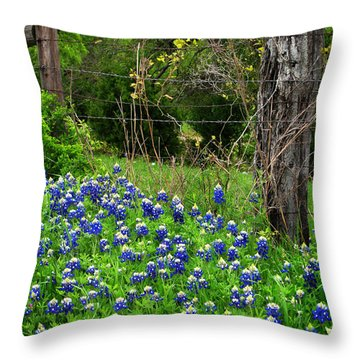 Fenced In Bluebonnets Throw Pillow by David and Carol Kelly