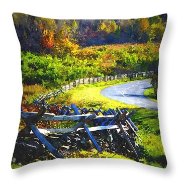Throw Pillow featuring the photograph Fenced In by Cathy Shiflett