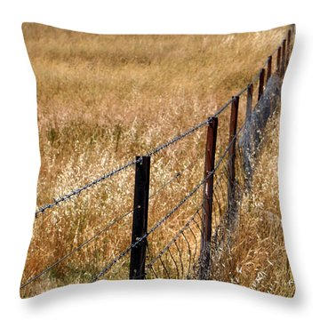 Fenced Off Throw Pillow by Kaleidoscopik Photography