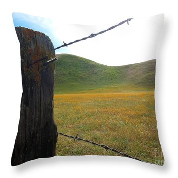 Fencepost On The 58 Throw Pillow by Paul Foutz
